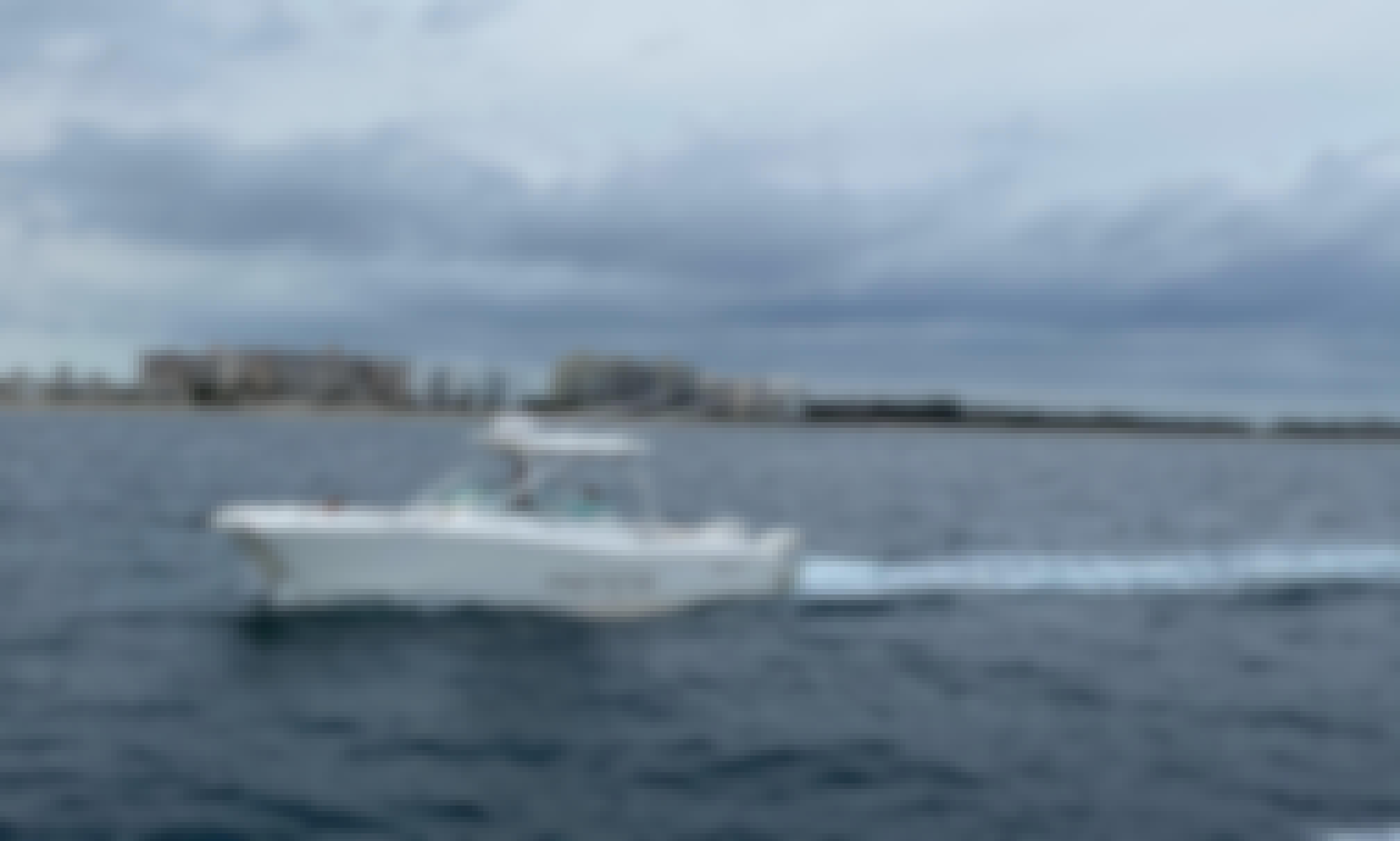 World Cat 290 DC Boat in Miami