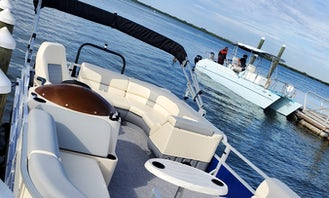 Safari Watch Dolphins and Visit Island In Clearwater Tampa - 22' Pontoon Lexington