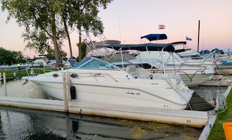 1994 Sea Ray 270 in St. Clair Shores/ Detroit