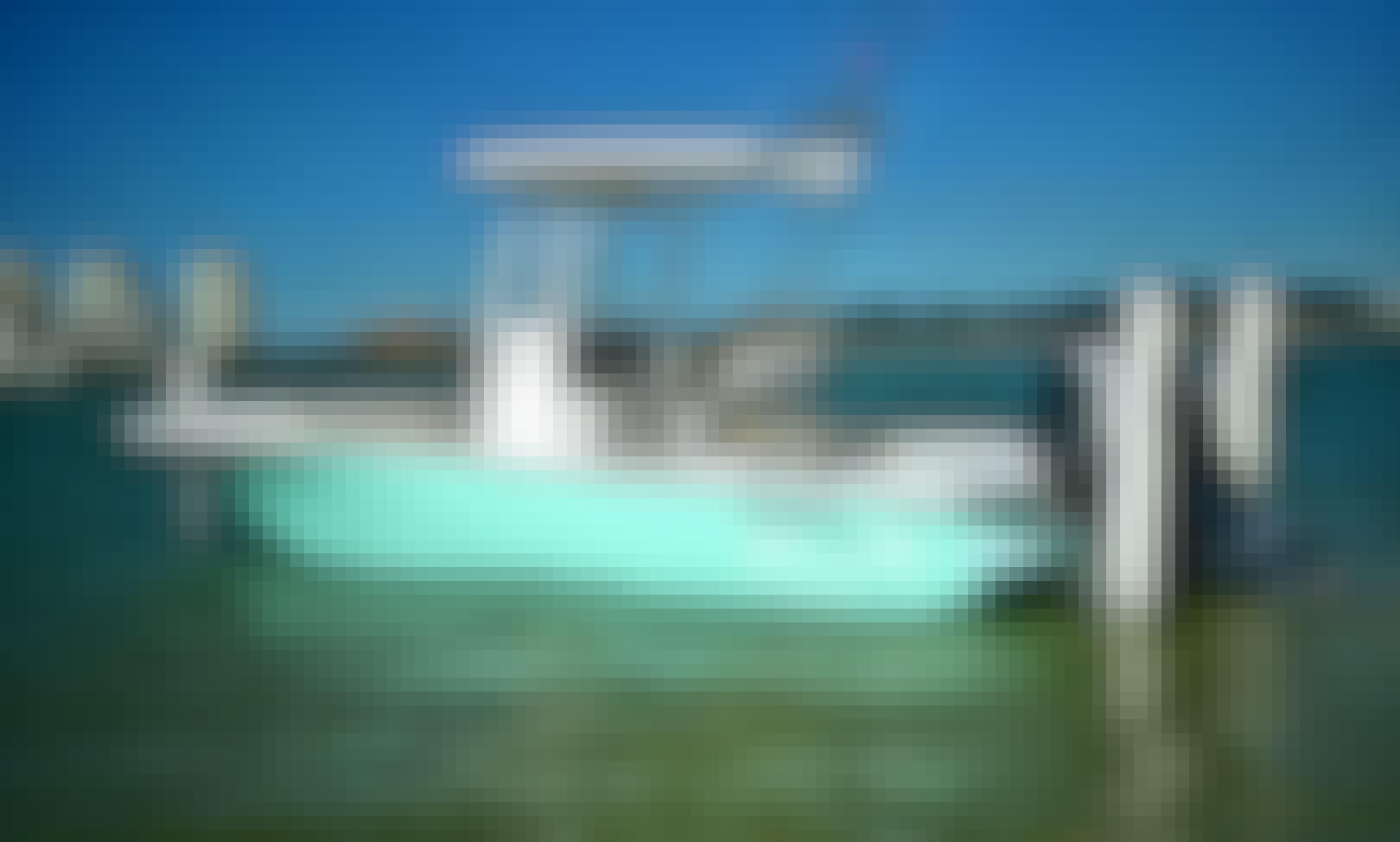 2018 Tidewater 2500 Fishing Charter in Belleair Bluffs
