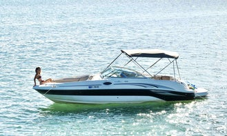 Affordable Sea Ray bowrider for experienced boaters to drive yourself or hire a captain!