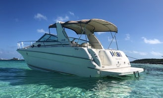4-Hours Private Wildlife Tour Onboard 31' Searay Sundancer Motor Yacht In Nassau, The Bahamas