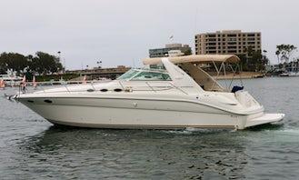 40'  Sea Ray Sundancer Motor Yacht -  Captain & Fuel Included