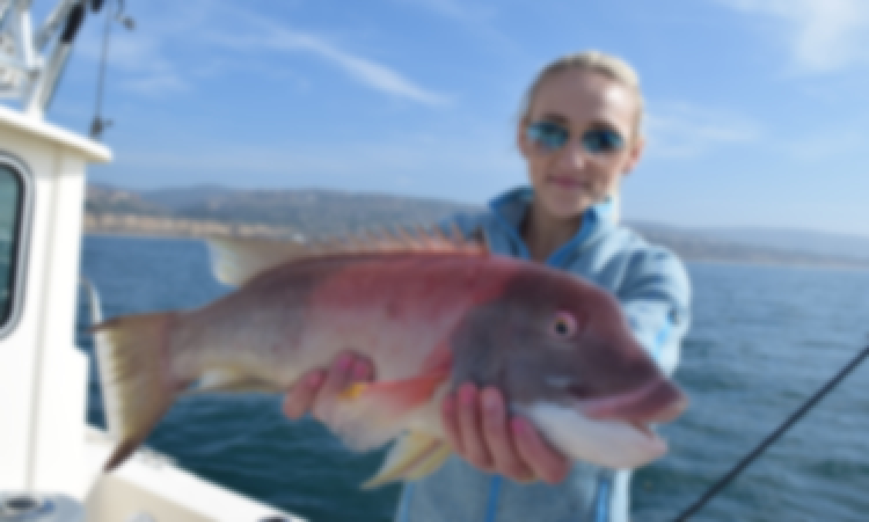 Catalina Island Private Fishing Charter w/ Captain, all inclusive!