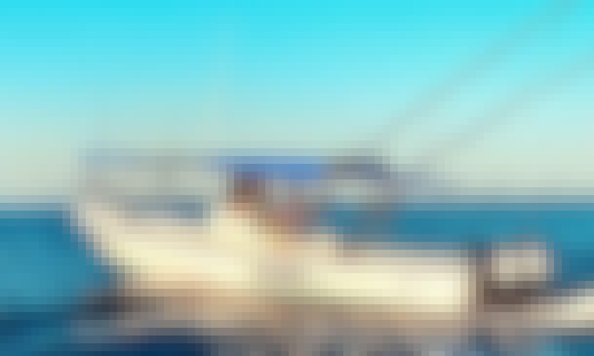 28' Super Panga Fishing Boat Charter in Puerto Vallarta