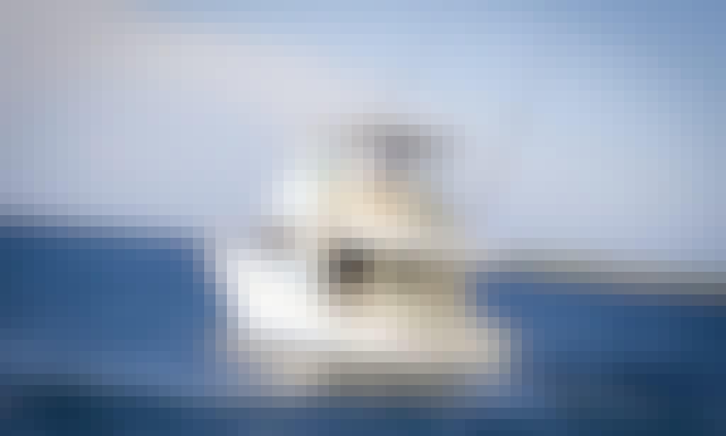 "47ft ""Elaine"" Bertram Motor Yacht Rental in La Romana, Dominican Republic"