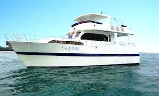 Custom Built 57 feet flybridge cruiser yacht for rent with skipper in Singapore