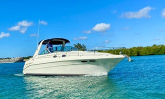Luxury Sea Ray Charter in Boca Chica / Lancha de Lujo en Boca Chica