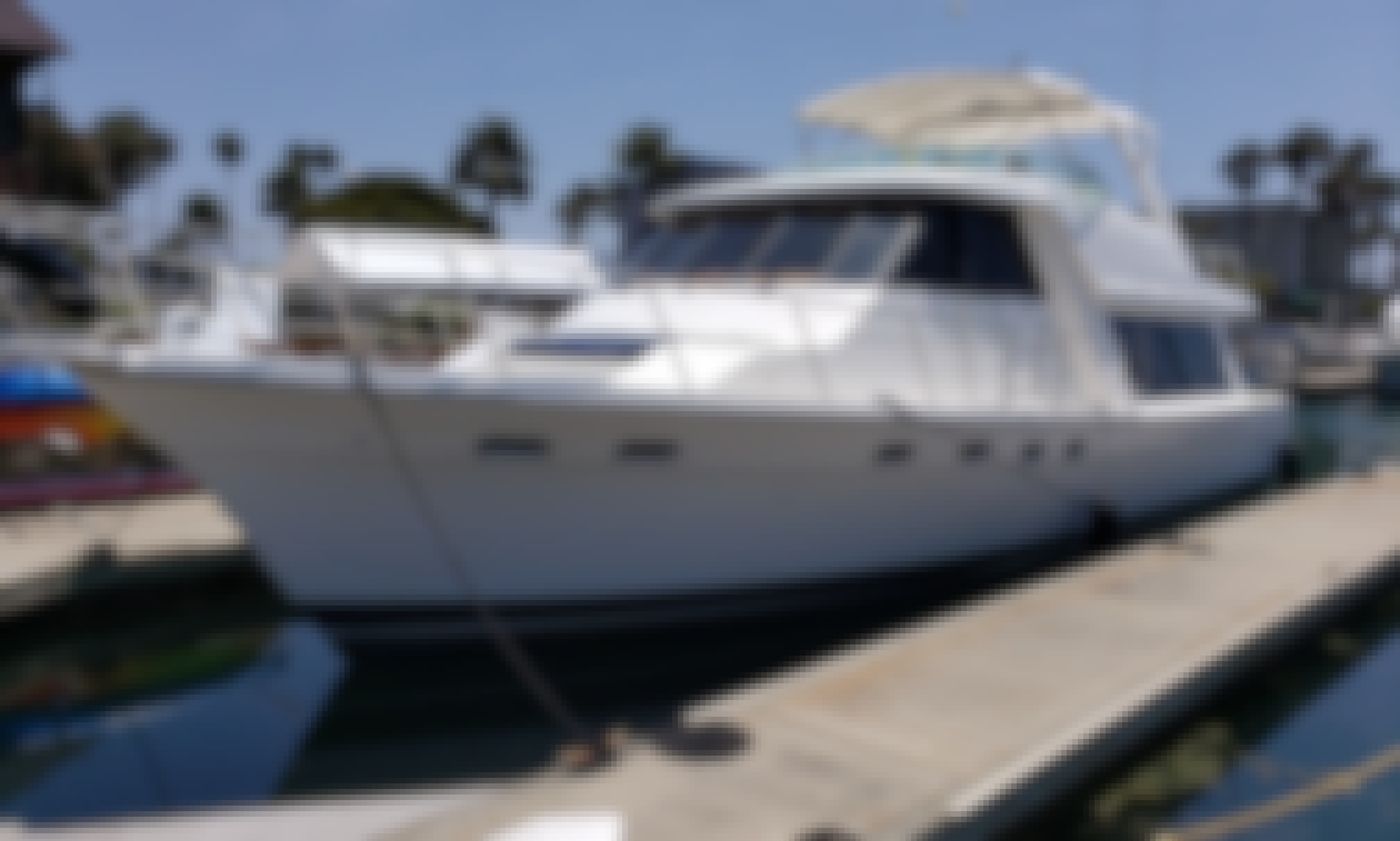 Cockpit Motor Yacht in Marina del Rey - Ideal for up to 12 Guests (First Time Offered for Charter)