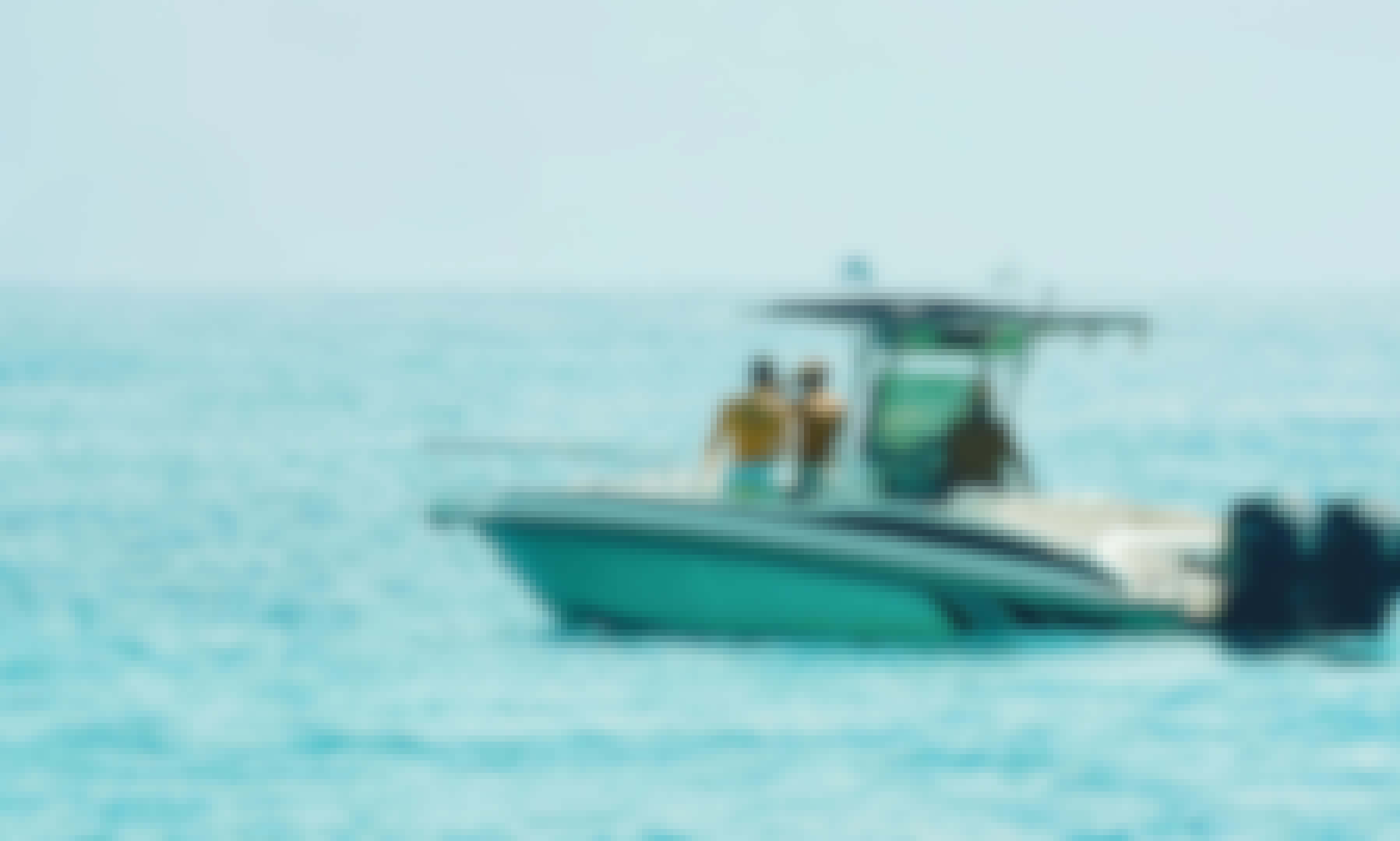 31' Boat Charter - Your Friend With A Boat