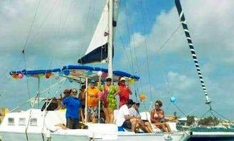 36' Catamaran Charter in San Pedro
