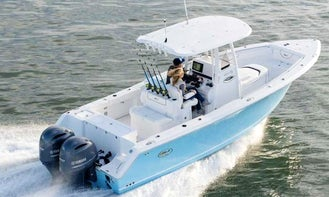 Captained Cruise on our Sea Hunt Gamefish 27' Center Console!! Orange Beach & Gulf Shores Captain Cruise