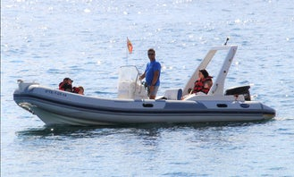 Private Zodiac Boat Tour In Tenerife!
