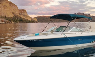 Awesome Sea Ray 23' Powerboat with Watersports Extras in Tempe