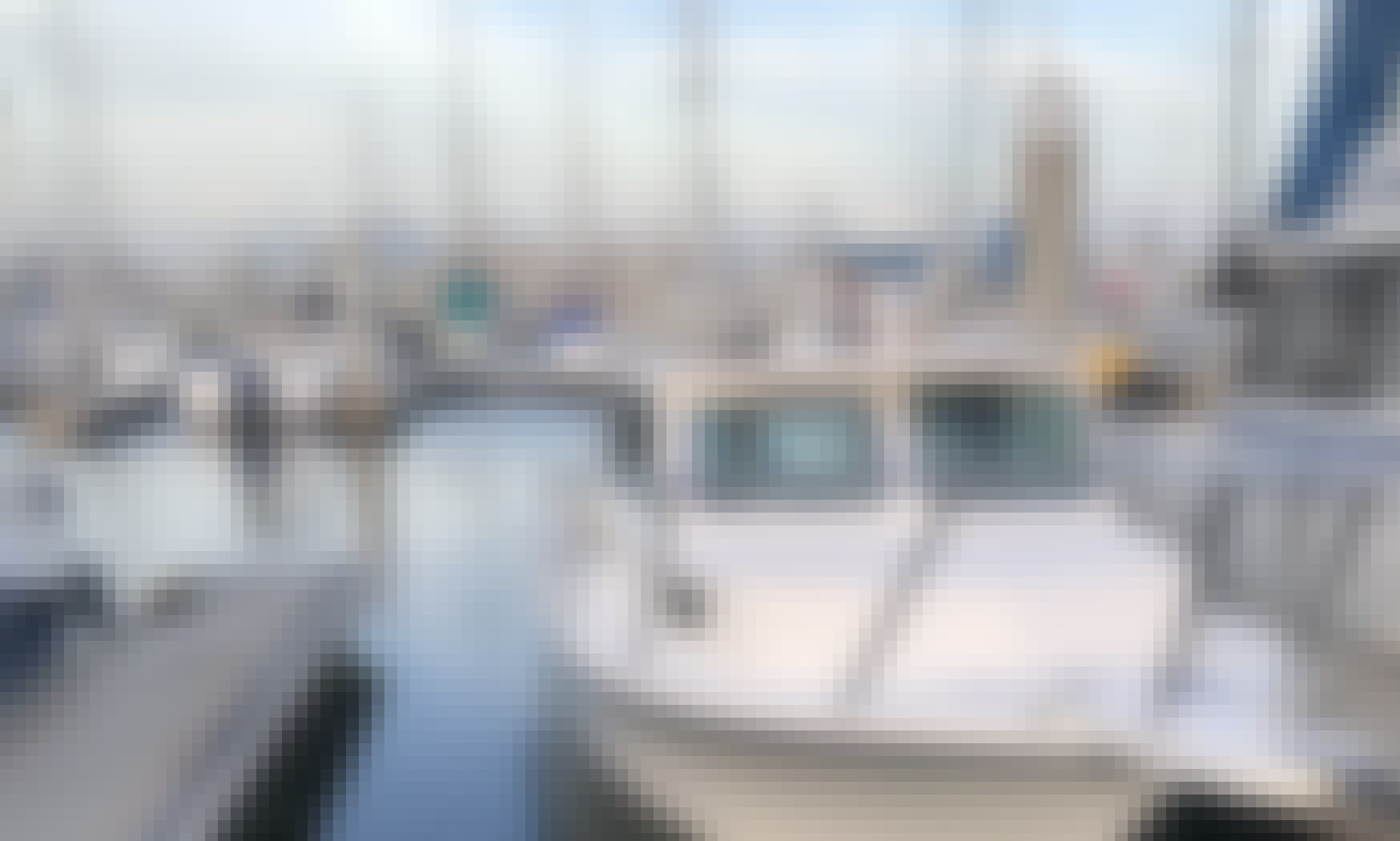Parker 2120 Private fishing trips to Catalina/excursions all inclusive