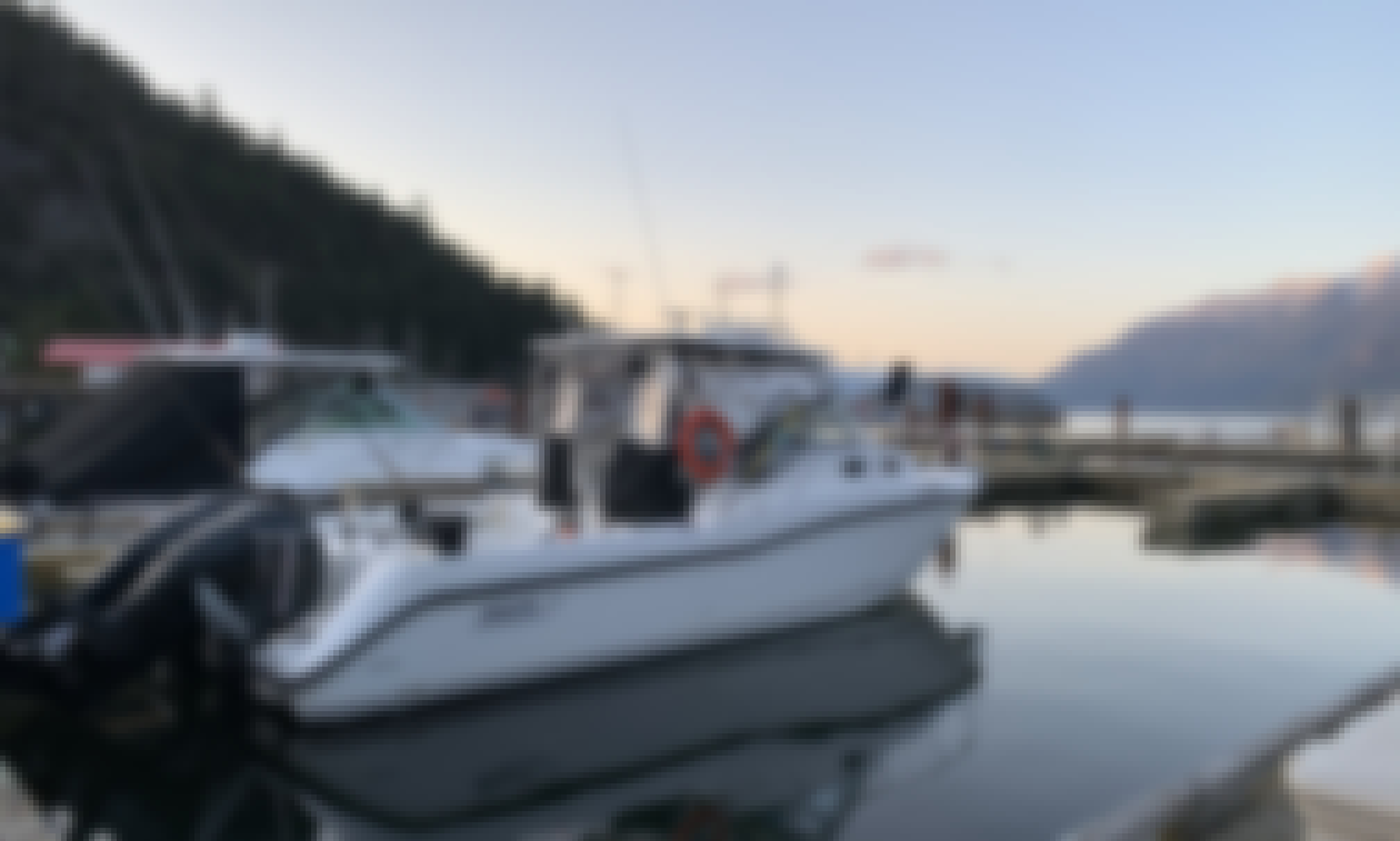 Boston Whaler Conquest 305 for charter in Vancouver