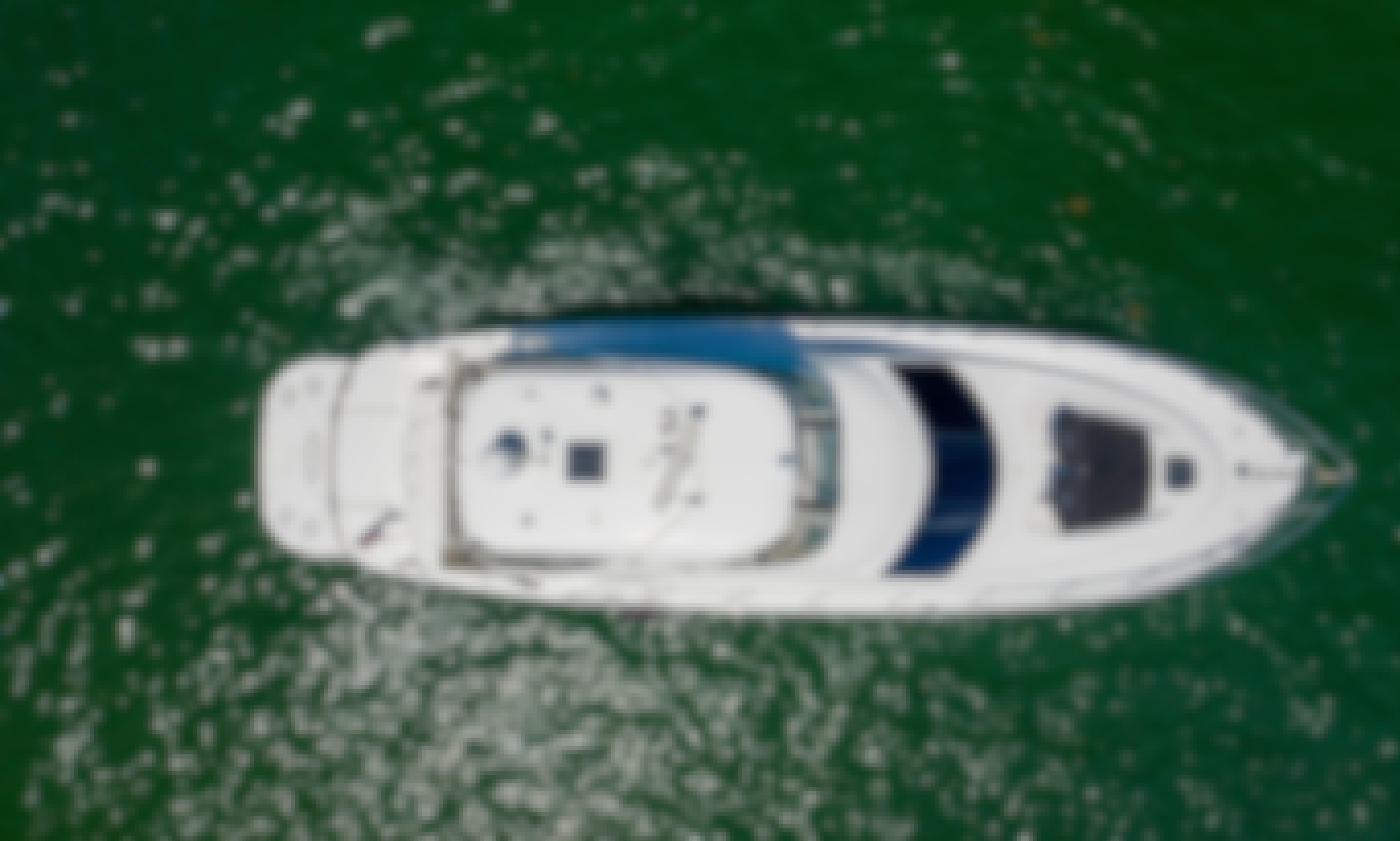 56' Searay Flybridge!! $10k Sound System. Party Yacht!!! Weekday