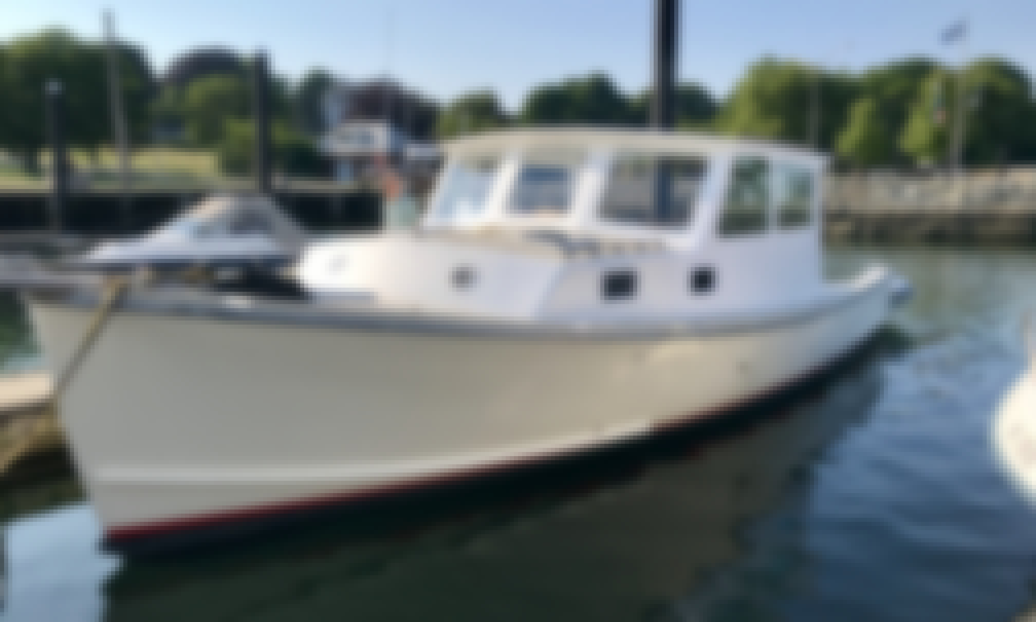 Moose- Classic 35ft Downeast Yacht Charters