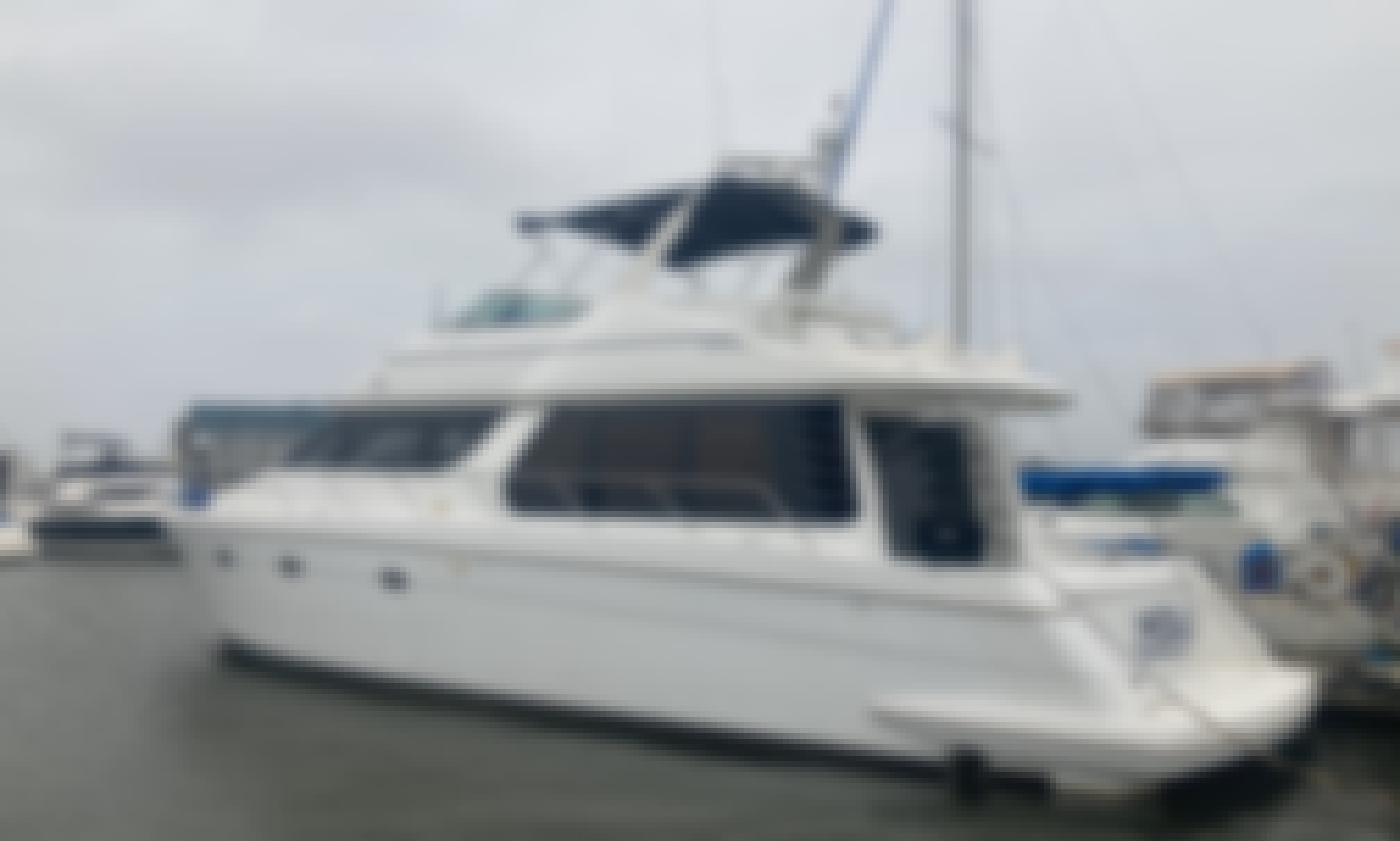 2004 Carver 53' Yacht for Charter in Galveston