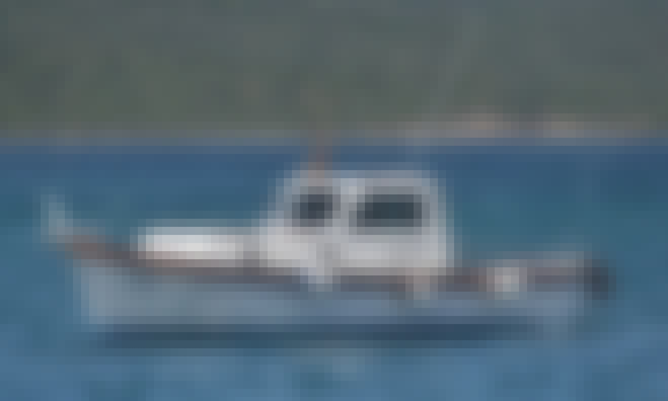 Sciallino 27 Motor Yacht Rental in Pesca D'Altura Olbia, Italy