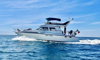 🐬🛥☀️ 50ft Yacht with Flybridge for rent in Puerto Vallarta, Mexico