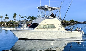 Hatteras Sportfisher 36' Fishing Charters, Snorkeling, Swim with Sharks and more in Haleiwa