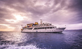 Boat Trips With DJ Party In Aqaba Gulf