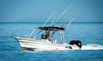 Inshore Fishing Charter for 4 People in Puerto Vallarta! Trip includes Fishing Equipment, Cooler, Live Bait, Captain and Fishing License!