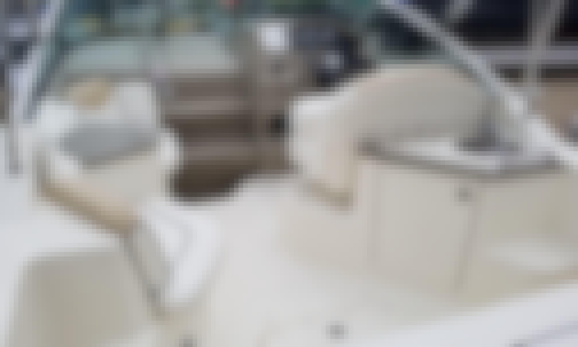 Sea Ray Cruiser Boat Rental in Hammond Indiana