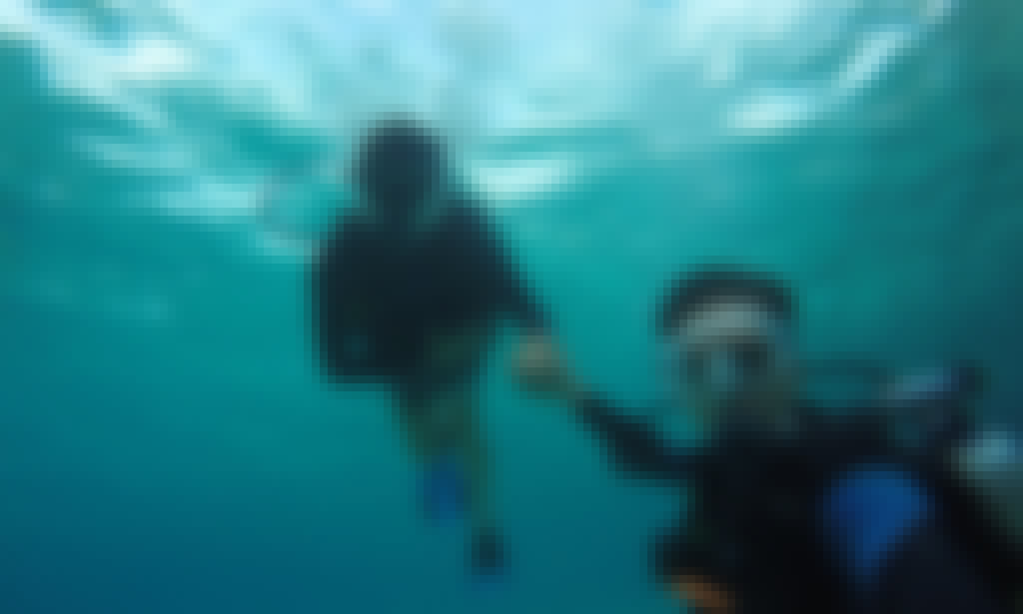 Discover Scuba Diving in San Miguel de Cozumel