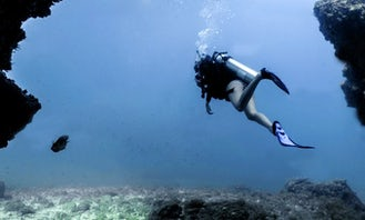 Discover Scuba Diving Tour in Puerto Vallarta - For Beginners
