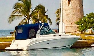 33ft Sea Ray Sundancer Cuddy Cabin Yacht Rental in Miami, Florida