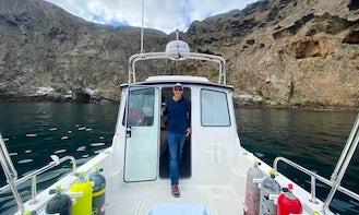 Full Day Island Dive Trip from Santa Barbara, California