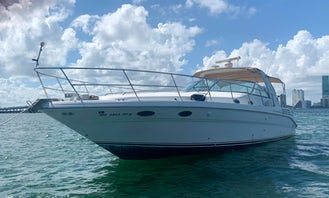 Beautiful Sea Ray 45 Motor Yacht for Charter in Miami Bay!