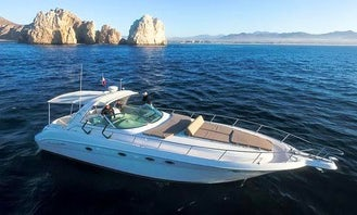 55ft B&B Searay Yacht Charter in Cabo San Lucas, Mexico