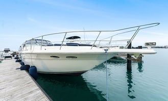 50' Sea Ray Sundancer 500 Yacht for 10 Guests in Chicago, IL - Best Value! (MPY#2)