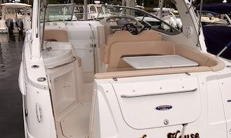 29' Stylish Chaparral Cruiser in Sag Harbor, New York!