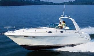 29' Luxury Cruiser for rent in Las Vegas