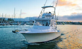 Henriques Express 34' Party Cruiser in San Diego Bay