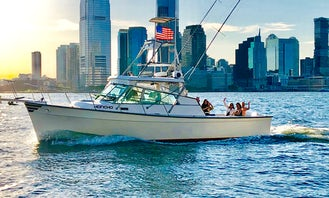 Enjoy NYC By Boat...Privately...without the crowds, perfect for birthdays, day cruises,sunset cruises, touring New York City