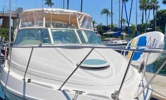 Instagram Worthy Boat in San Diego