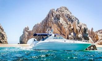 45' Sea Ray Yacht Package Deal in Cabo San Lucas, Baja California Sur