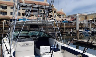 33ft Sea Ray Fishing Charter in Cabo San Lucas