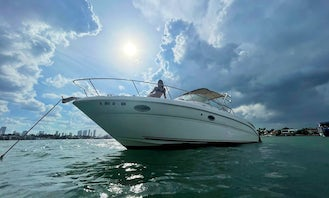 Rent my Sea Ray 32ft powerboat for the day in Miami!!