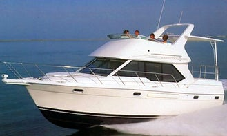 Bayliner 3587 Yacht Charter in Kirkland, Washington
