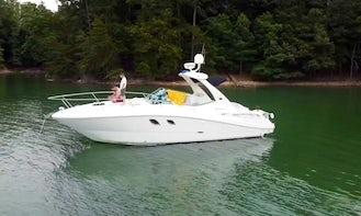 Sea Ray 310 Sundancer Luxury Cabin Cruiser on Lake Lanier
