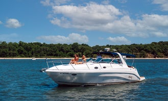 Beautiful 38' Rinker Yacht up to 12 Guests