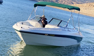 11 Passenger Boat Rental, Bass Lake