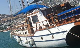 Private charter for daily boat trip on sailing Gulet PN for 12 people in Bodrum