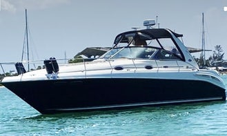 Have fun in our private Miami Charter 38' Sea Ray for up to 10 people